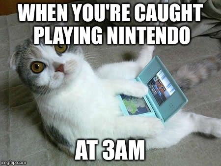 Nintendo Cat Busted