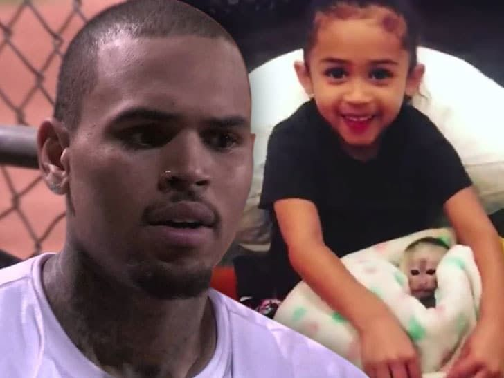 Chris Brown got himself a pet monkey but never got a permit to keep her so now he s sans monkey and could face criminal charges TMZ has learned