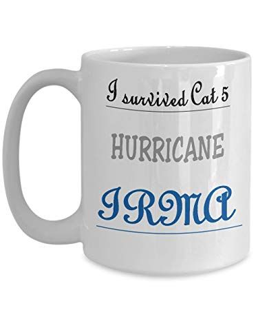 I survived Cat 5 HURRICANE IRMA Coffee Ceramic Mug Tea Cup Funny Merry