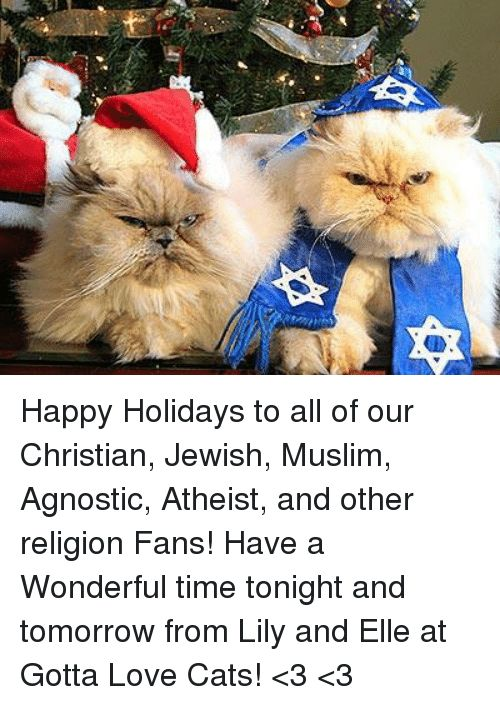 Cats Love and Memes Happy Holidays to all of our Christian Jewish