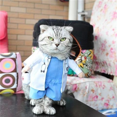 Funny Cat Costume Halloween Pet Cat Dog Clothes Creative Novelty Cat Kitten Clothes Cowboy
