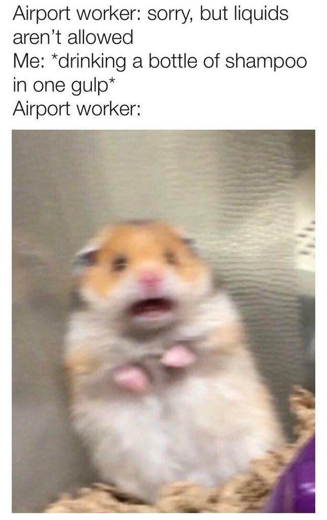 40 Mega Memes for Your Wednesday memes