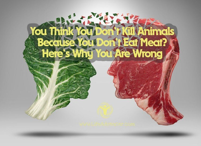 You Think You Don t Kill Animals Because You Don t Eat Meat Wrong Says Argentinian Naturalist