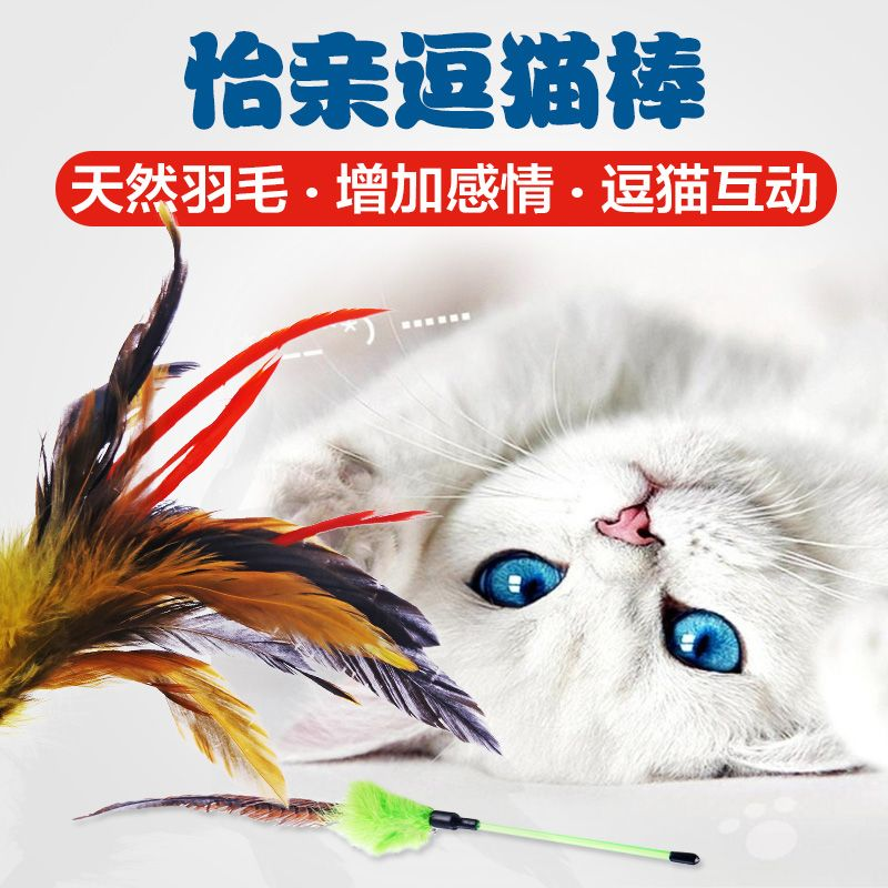 Get Quotations · Yi pro funny cat funny cat stick feathers funny cat rod bell funny cat toy cat