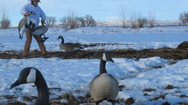 Idaho markets hunting as tradition fails to be passed down Montana Untamed
