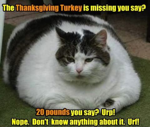 Missing Turkey