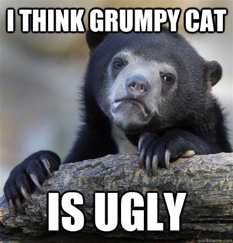I Think Grumpy Cat Is Ugly Confession Bear Quickmeme