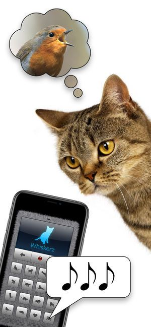 Human to Cat Translator 4