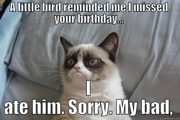Belated birthday A LITTLE BIRD REMINDED ME I MISSED YOUR BIRTHDAY I