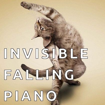 Find the Incredible Funny Invisible Cat Pictures