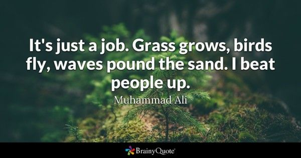 It s just a job Grass grows birds fly waves pound the sand