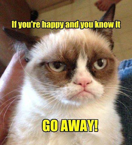 Grumpy Cat captions Cats funny
