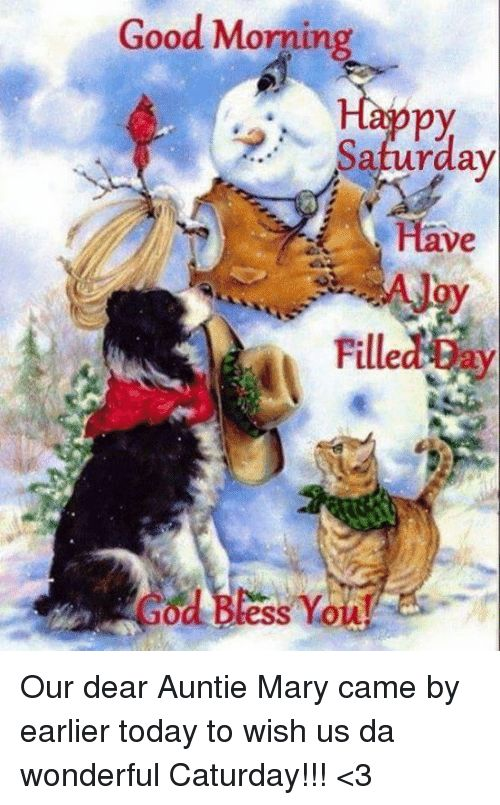 Caturday Memes and Good Morning Good Morning py Saturday Have Filled od tess