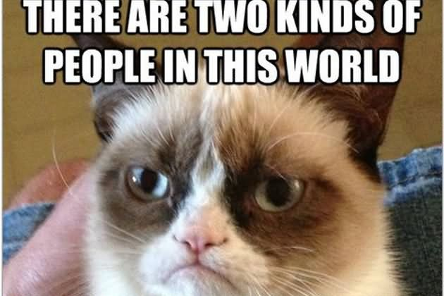 There Are Two Kids People In This World Funny Grumpy Cat Meme Picture