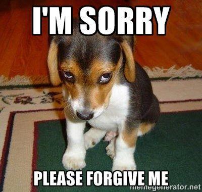 I m sorry Please forgive me Sad Puppy