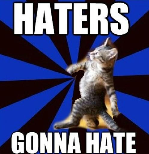 """here s another fine contribution to the """"HATERS GONNA HATE"""" cat meme genre"""