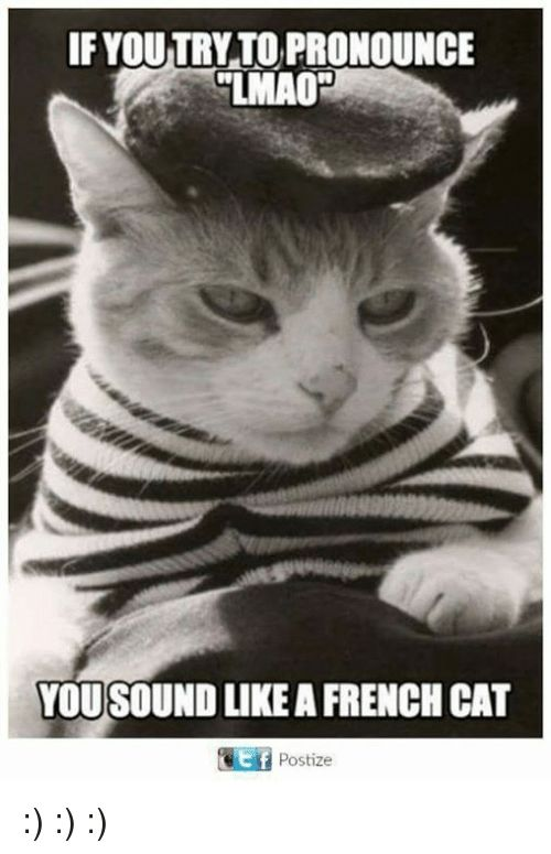 Lmao Memes and French IF YOUTRYTO PRONOUNCE LMAO YOU SOUND LIKE A FRENCH