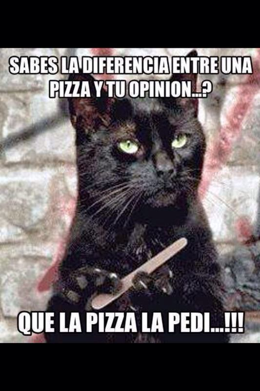 Sºper cat · Spanish HumorFunny Spanish MemesHilarious