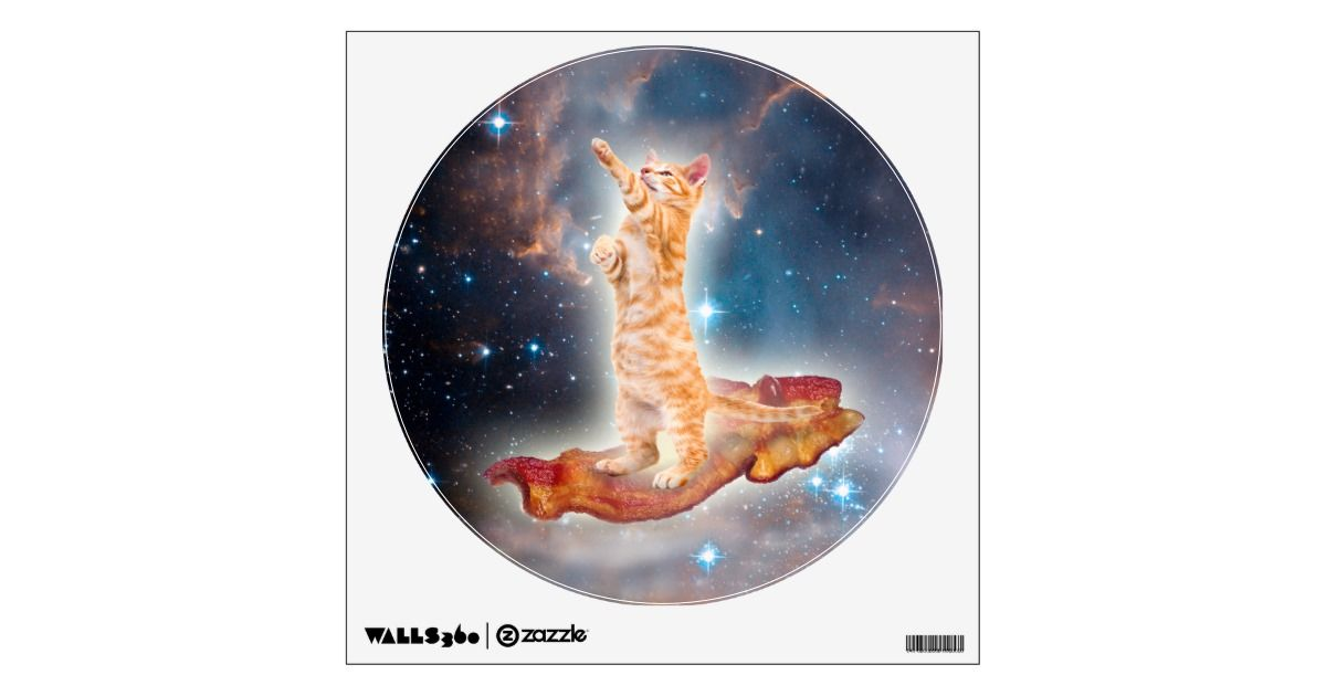 bacon surfing cat in the universe wall sticker r47a4c b04e3890d196b f7 kou2n 8byvr 630