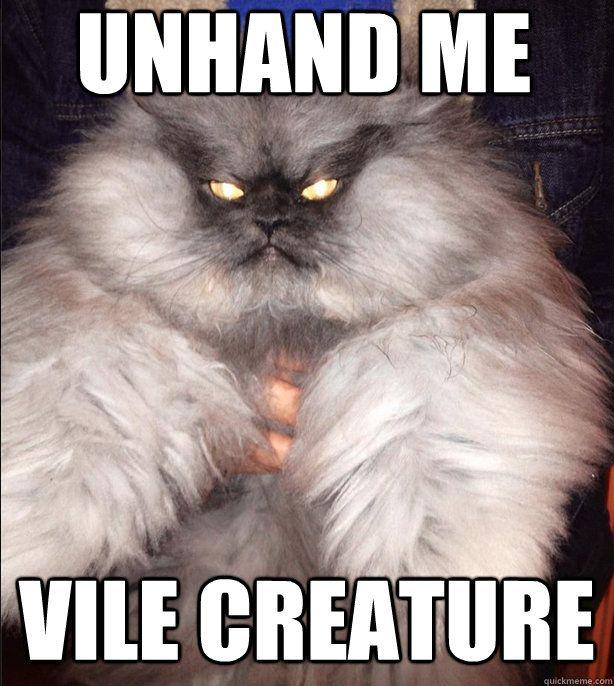 Unhand me Vile Creature Unhand me Vile Creature Evil Cat