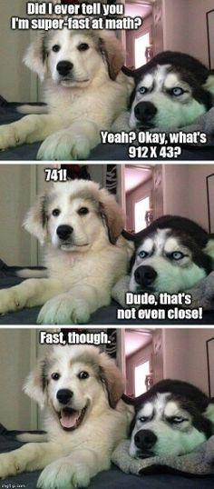 Pun Husky Husky Humor Funny Husky Meme Dog Humor Dog Funnies