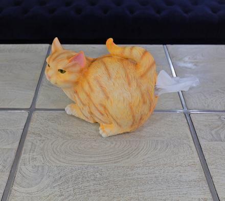 funny cat butt tissue dispenser thumb