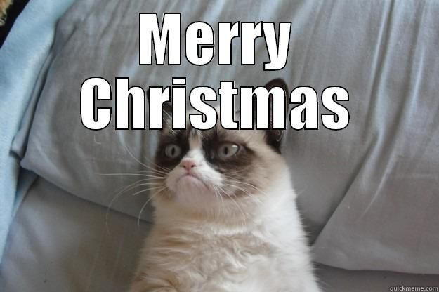 Grumpy Cat at Work MERRY CHRISTMAS Grumpy Cat