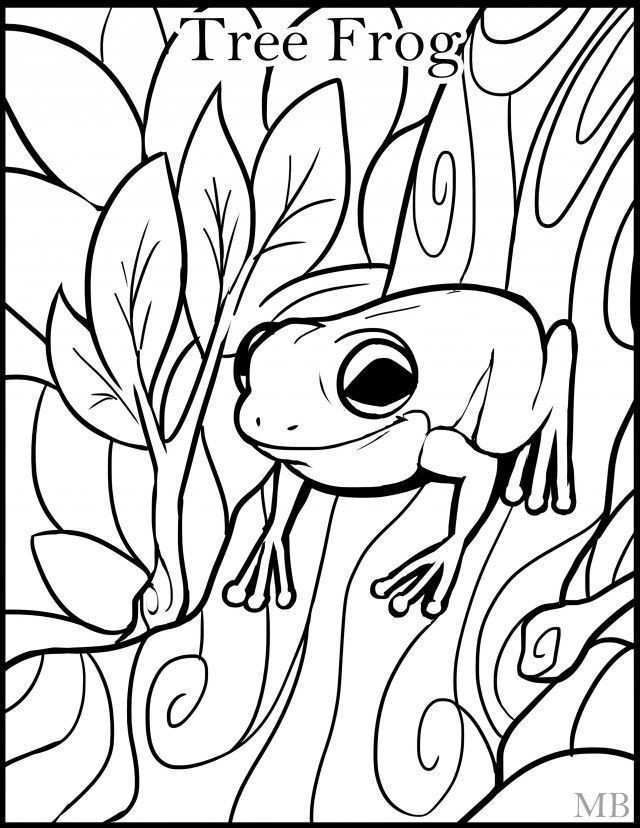 Free Coloring Pages Squirrels Awesome Frog Coloring Pages Fresh Frog Colouring 0d Free Coloring Pages