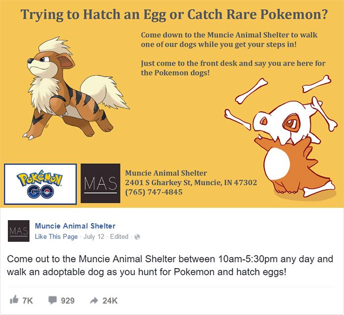 An animal shelter in Muncie decided to use Pokémon Go to encourage people to volunteer to walk dogs