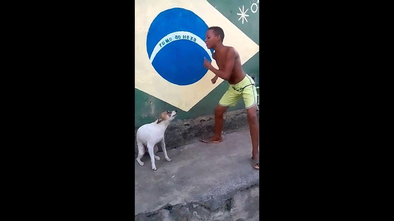 Brazil Dog Dance