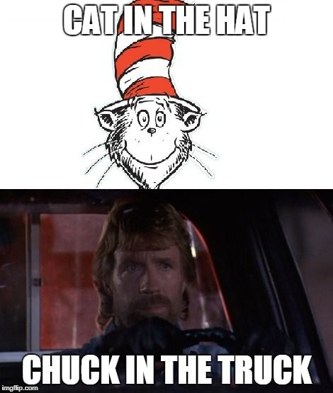 Chuck Norris Cat In The Hat