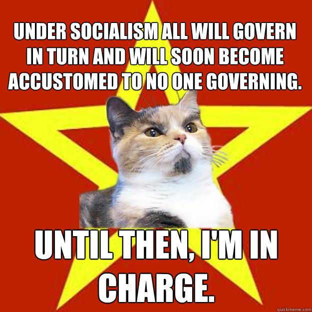 Under Socialism All Will Govern Cat Meme