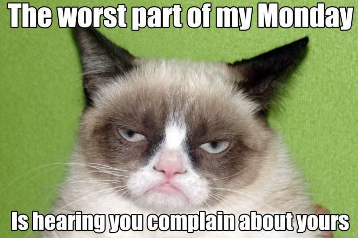 Get the Beautiful Funny Wednesday Memes Grumpy Cat