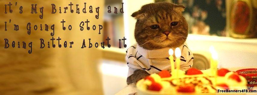 068 cute funny cat happy birthday quote