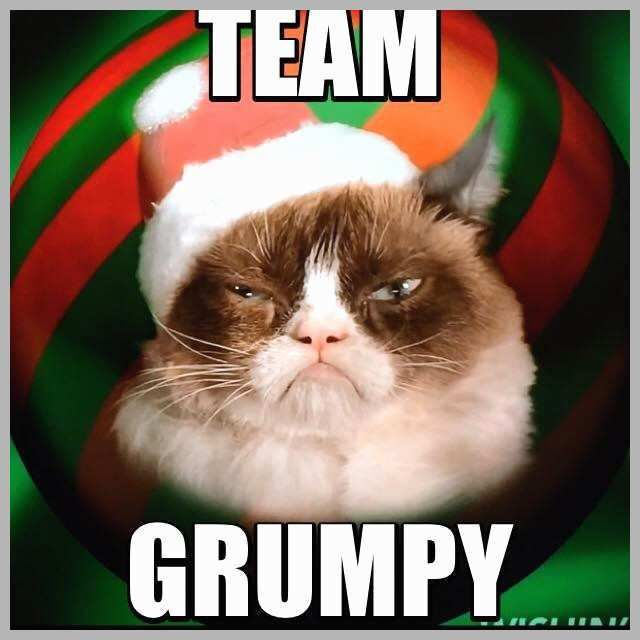 Funny Grumpy Cat Christmas Memes.Gather The Incredible Funny Christmas Grumpy Cat Memes