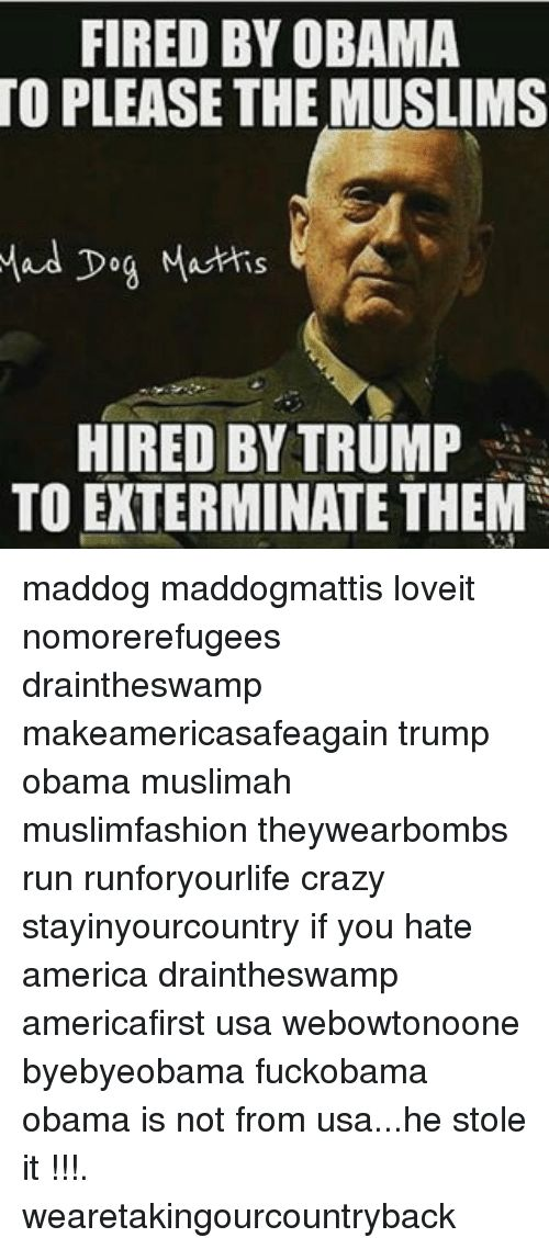 Dogs Memes and Muslim FIRED BY OBAMA TO PLEASE THE MUSLIMS Mad Dog