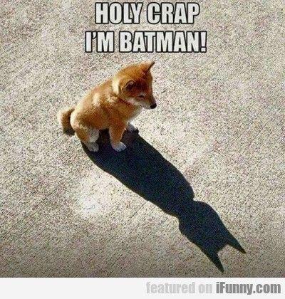 Funny Batman Memes Hilarious Animal Memes Funny Dog Jokes Memes 2016 Funny