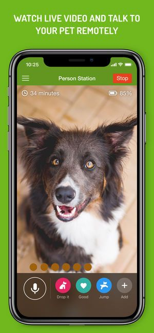 Dog Monitor 4