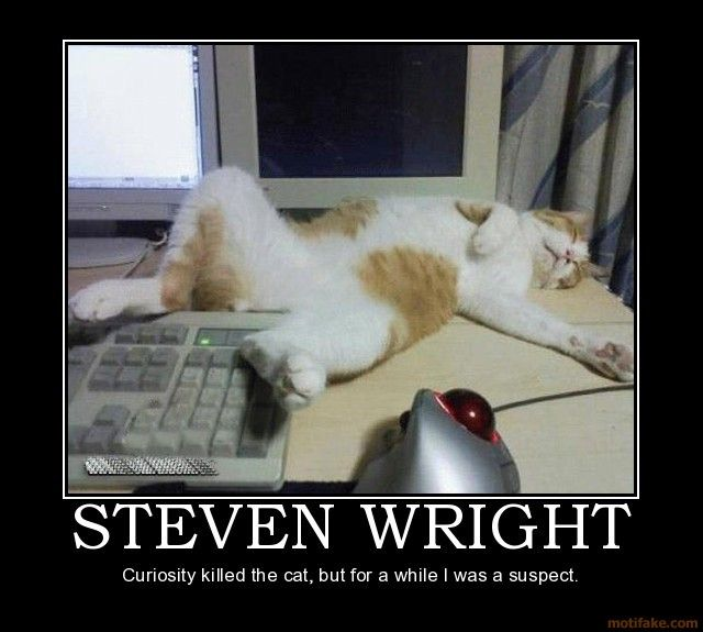 curiosity killed the cat steven wright puter cat demotivational poster