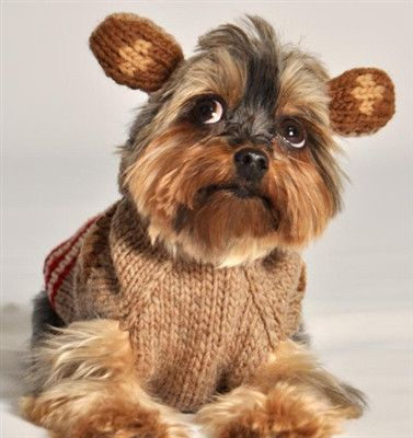 Your furry fashionista will be warm and cozy in this adorable Monkey Hoo by Chilly Dogs Chilly Dog Sweaters are made following the Fair
