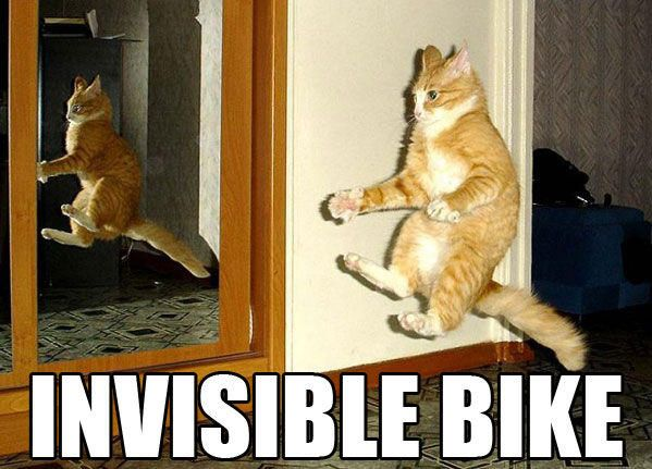 invisible bike cat meme from LOLcat which 4chan may have started