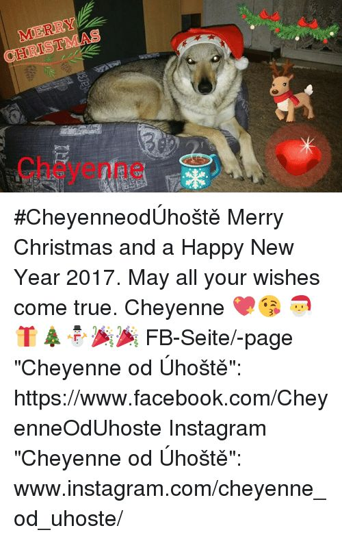 Memes New Year s and 2017 MERRY CheyenneodšhoÅ¡tě Merry Christmas and a Happy