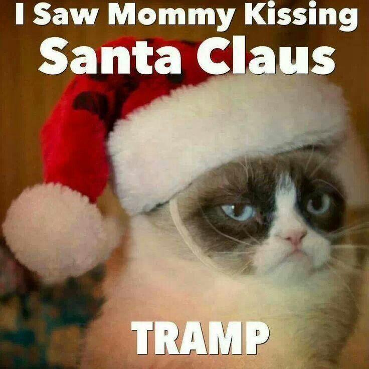 Christmas Grumpy Cat Quotes QuotesGram