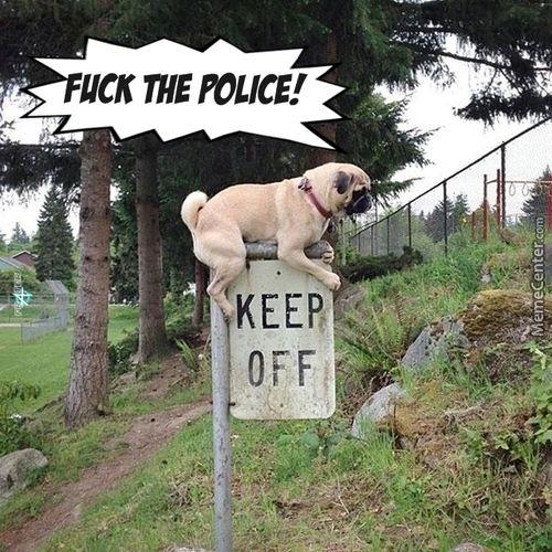 ce A Rebel Always A Rebel