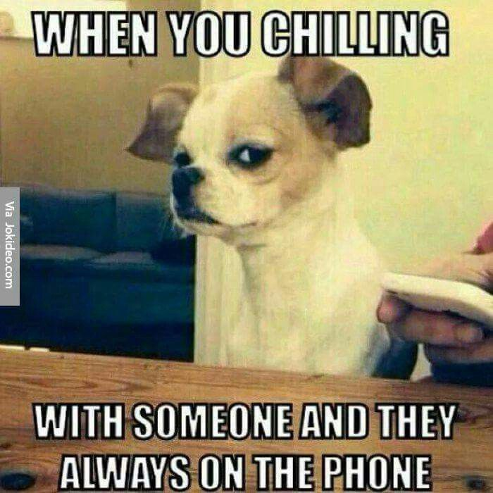 Phone manners Funny Memes Lol Memes Funny But True So Funny So