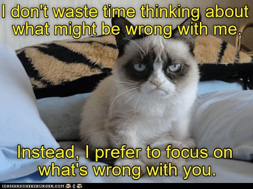 Grumpy cat meme about what is wrong with you