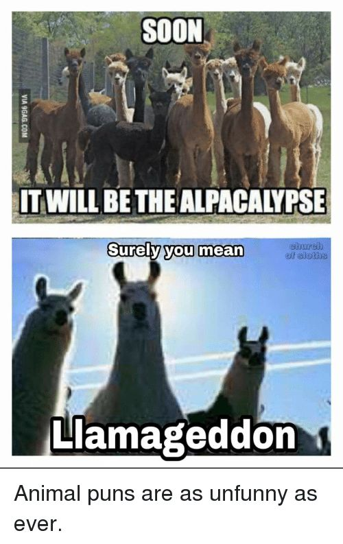 Puns Soon and Animal SOON IT WILL BE THE ALPACALYPSE