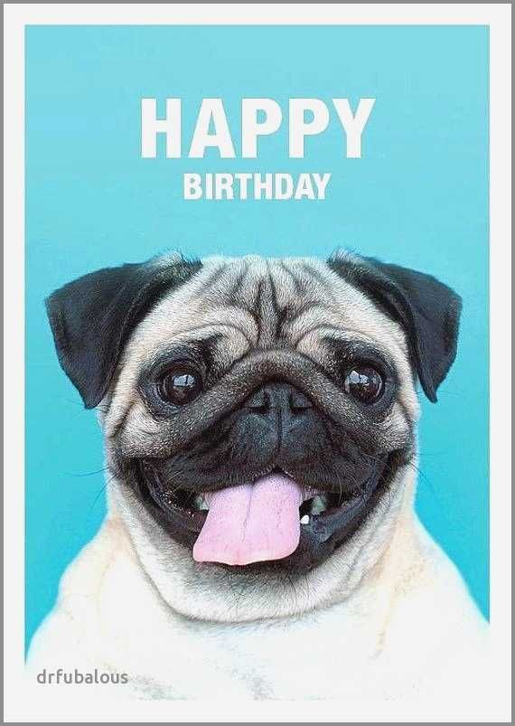 Funny Dog Birthday Cards Luxury Fancy Google S S Media Cache Ak0 Pinimg 736x 23 04 0d