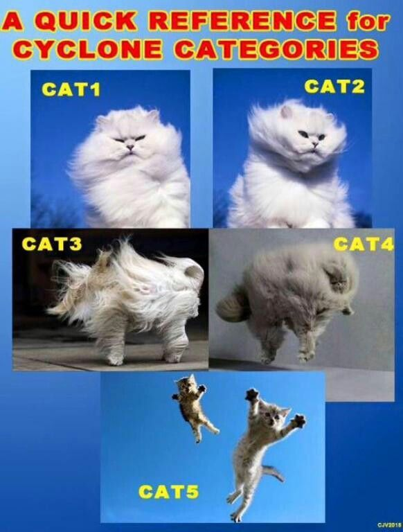 Cat 1 to 5 cyclone chart