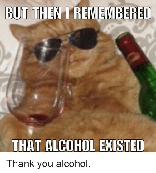 Grumpy Cat Thank You and Alcohol BUT THEN REMEMBERED THAT ALCOHOL EXISTED Thank
